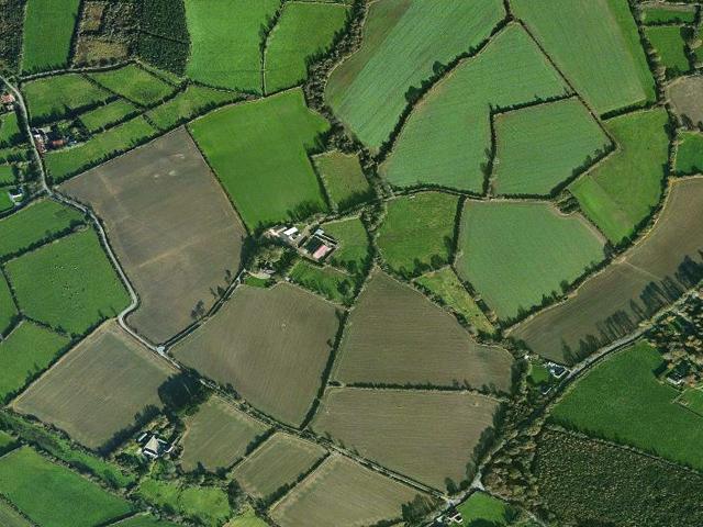 160 Acre Farm - Gaynestown Stud Wexford