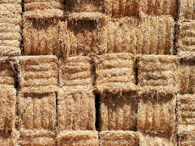 Homegrown Hay - Gaynestown Stud Wexford