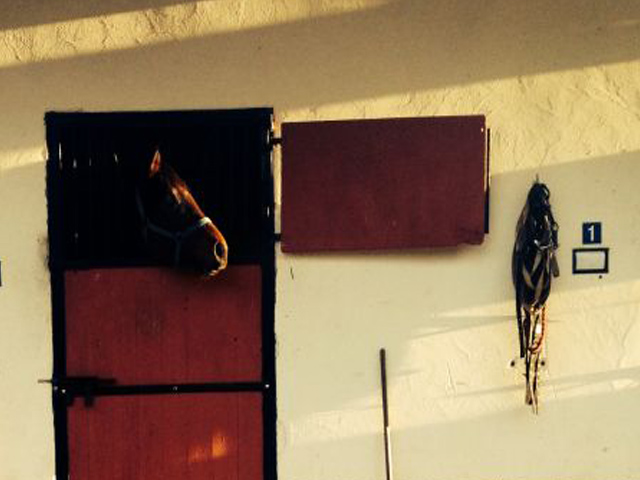 The Stables - Gaynestown Stud Wexford